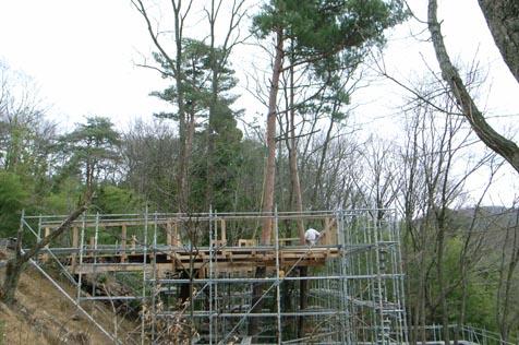 建設中のツリーハウス