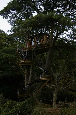 京丹後のツリーハウス