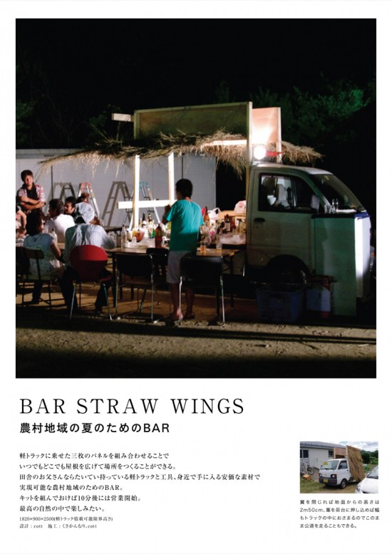 BAR STRAW WINGS