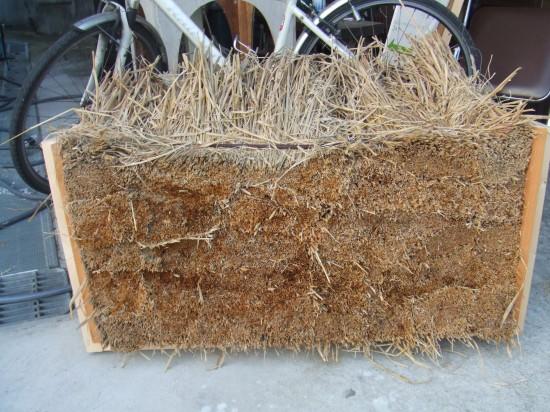 藁の版築サンプル