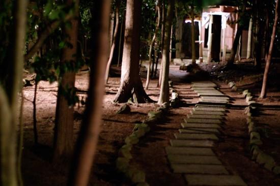 淡河八幡宮鎮守の森