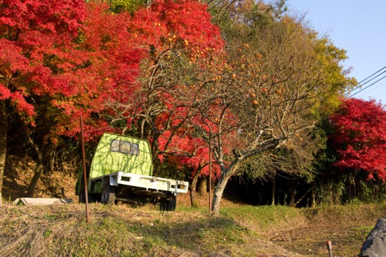 緑の軽トラに映える紅葉