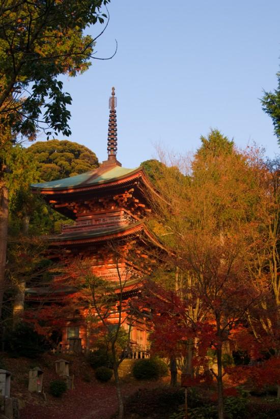 秋の石峯寺