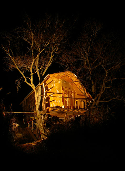 ツリーハウス外観 夜景 池方向より