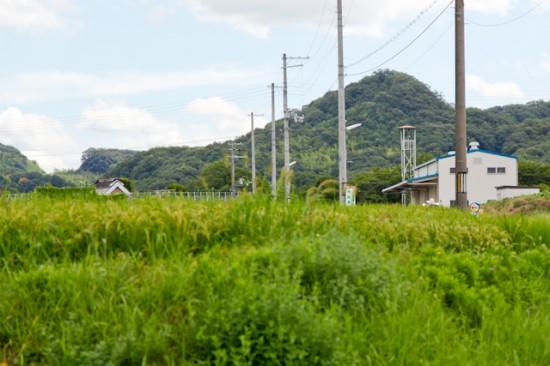 淡河町木津の風景