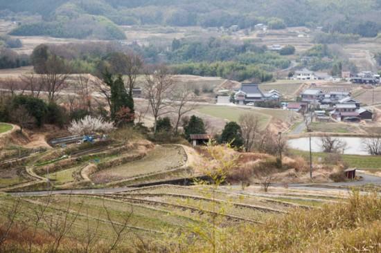 大沢町 棚田のある風景