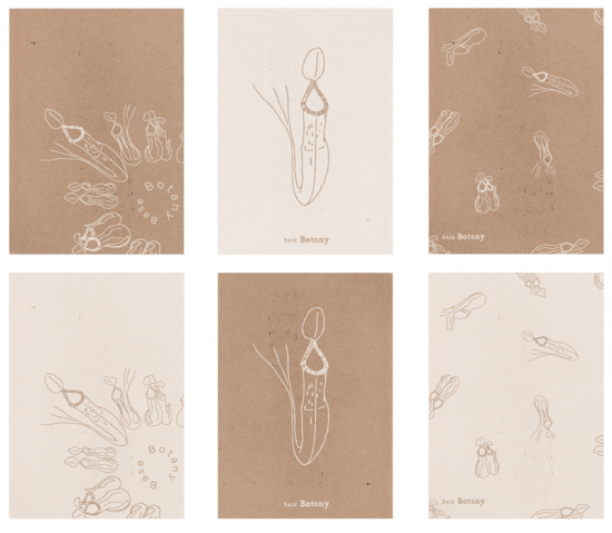 base botany ポストカード